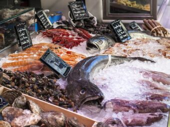 Fish from fish markets contains plastic